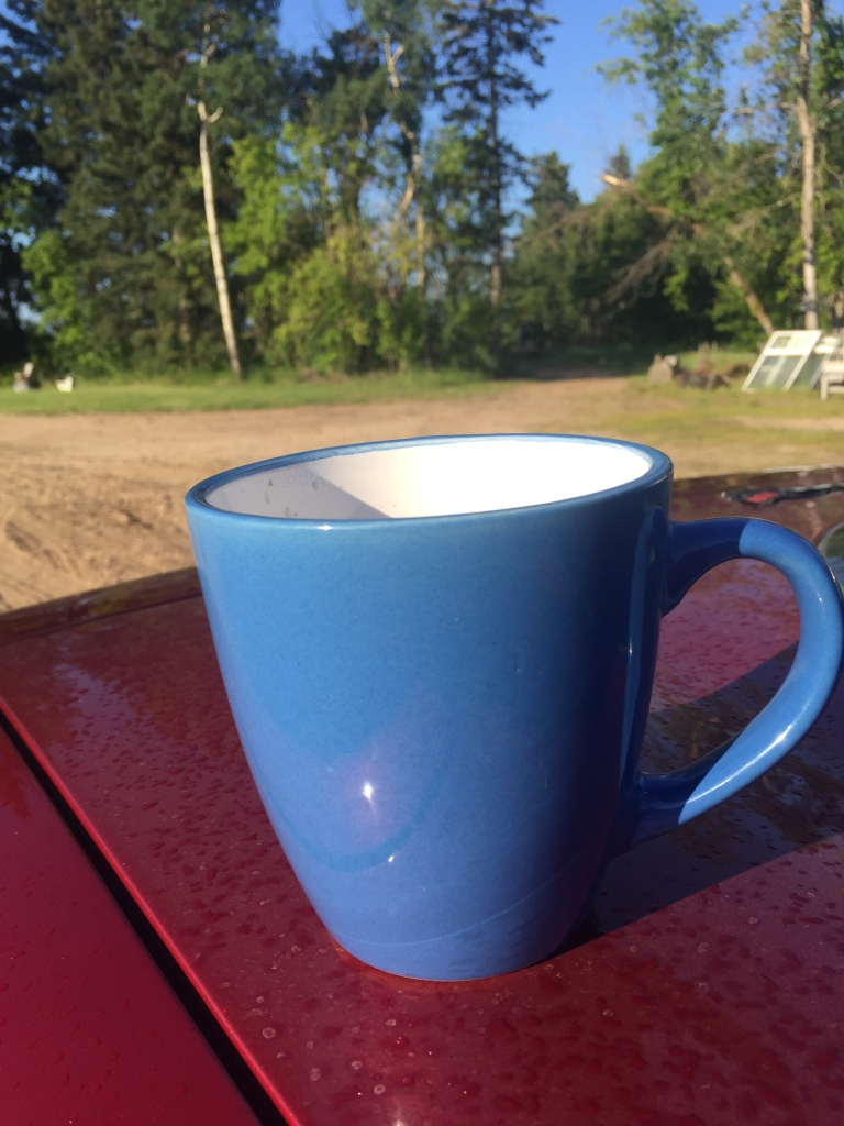 Coffee cup on vette