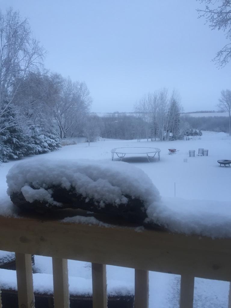 Heavy spring snow